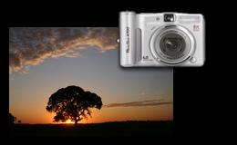 Curso de Fotografia Digital para Câmeras Compactas