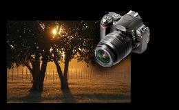 Curso de Fotometria Avançada e Composição