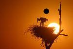 onde fotometrar o por do sol
